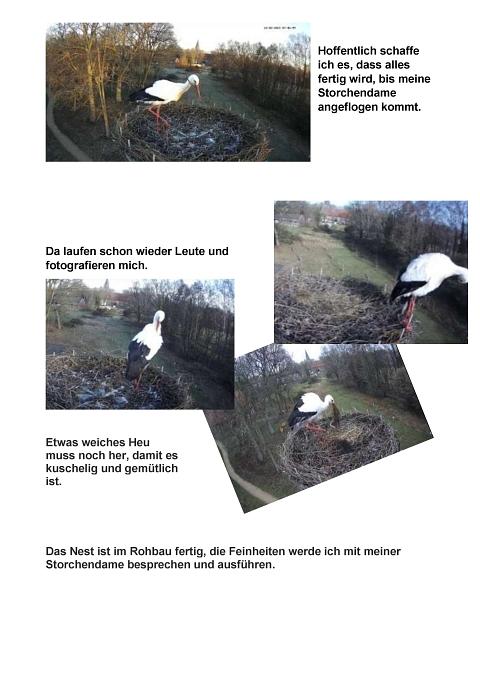 Seite 05 Storchentagebuch©Heimatverein Holtorf