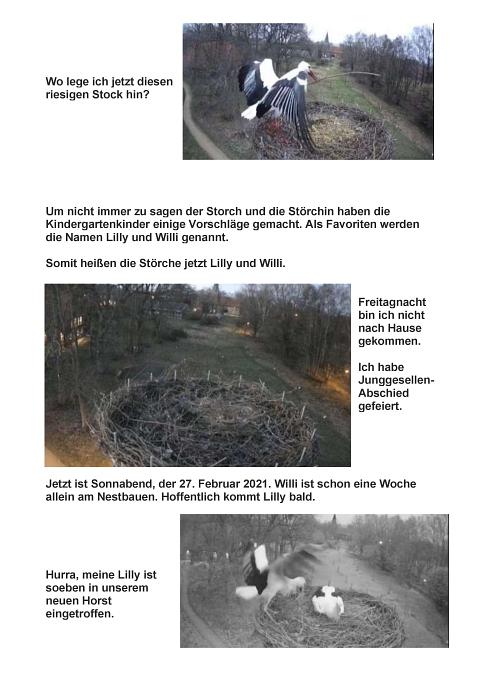 Seite 06 Storchentagebuch©Heimatverein Holtorf