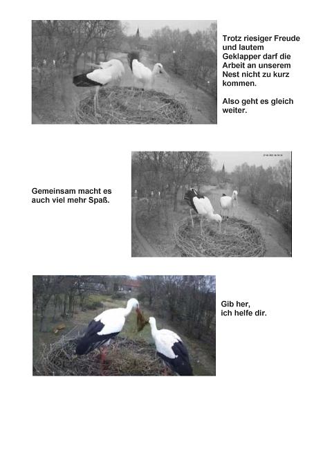 Seite 07 Storchentagebuch©Heimatverein Holtorf