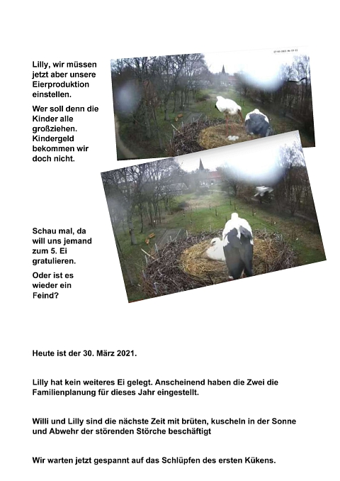 Seite 18 Storchentagebuch©Heimatverein Holtorf