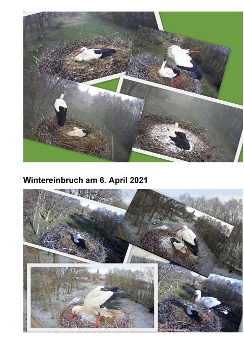Seite 21 Storchentagebuch©Heimatverein Holtorf